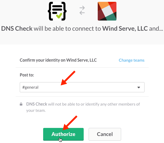 Slack Authorization Form for DNS Check